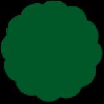 liso_verde bande s2