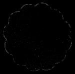 asterisco_preto-600x602
